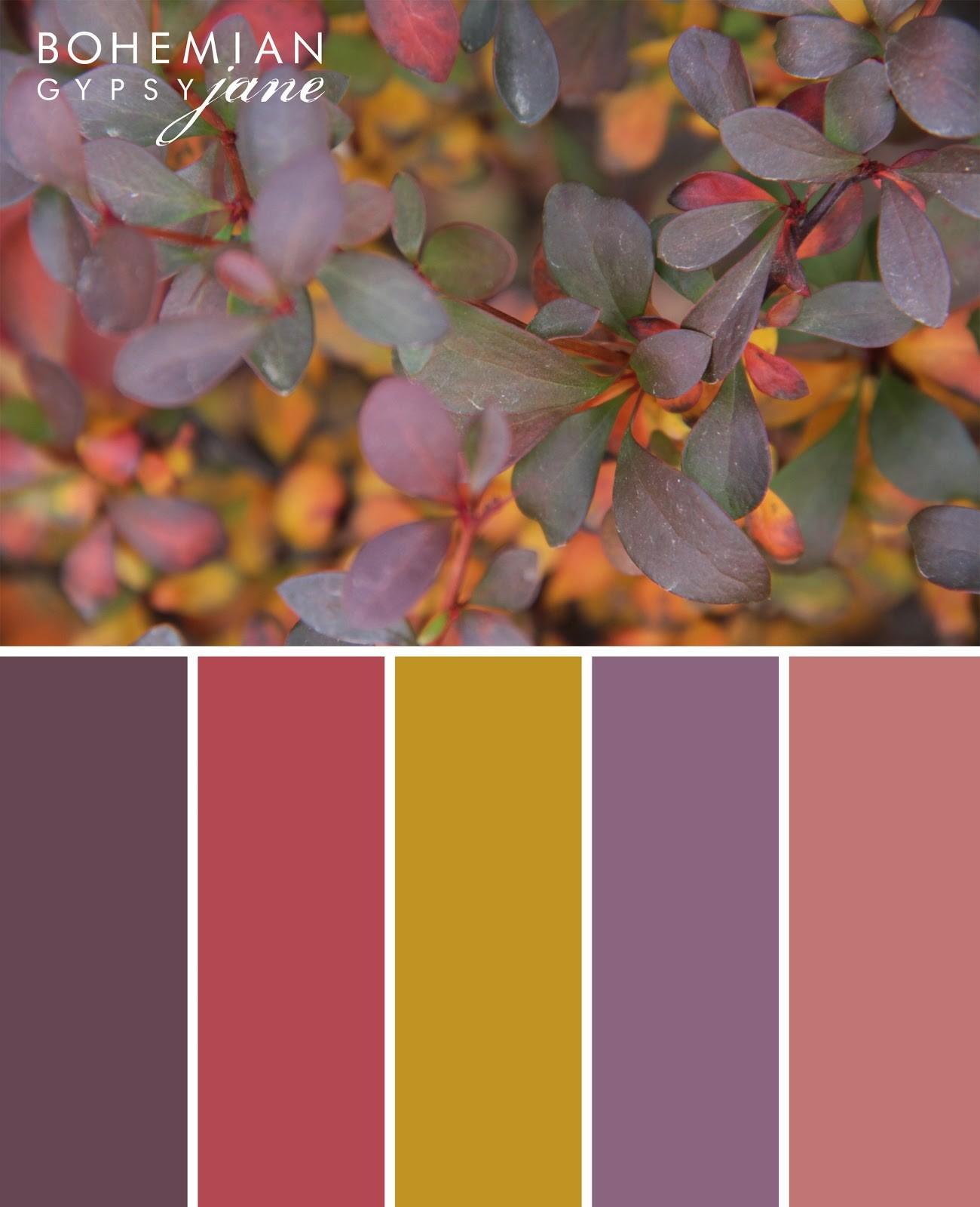 Bohemian Gypsy Jane Color Love Fall Inspiration