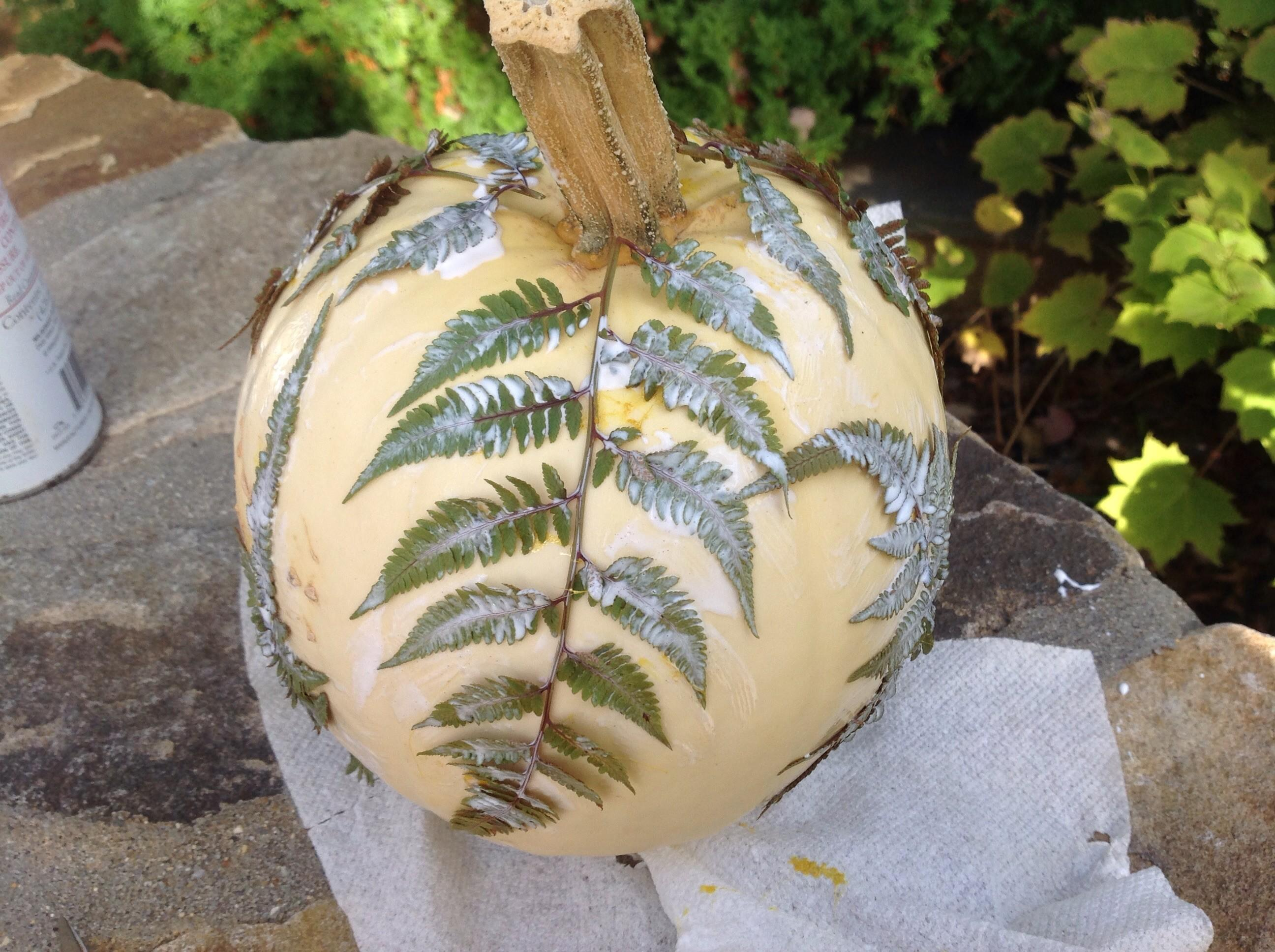 Botanical Pumpkins Diy Tutorial French Gardener Dishes