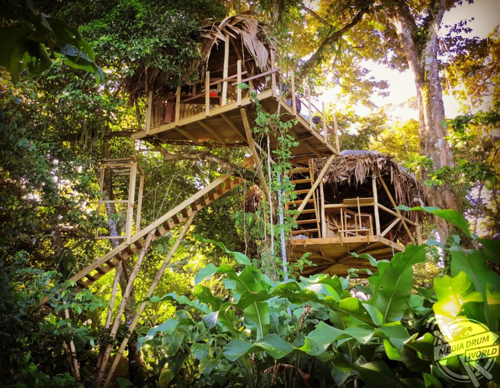 British Built Tree House Caribbean Jungle Which