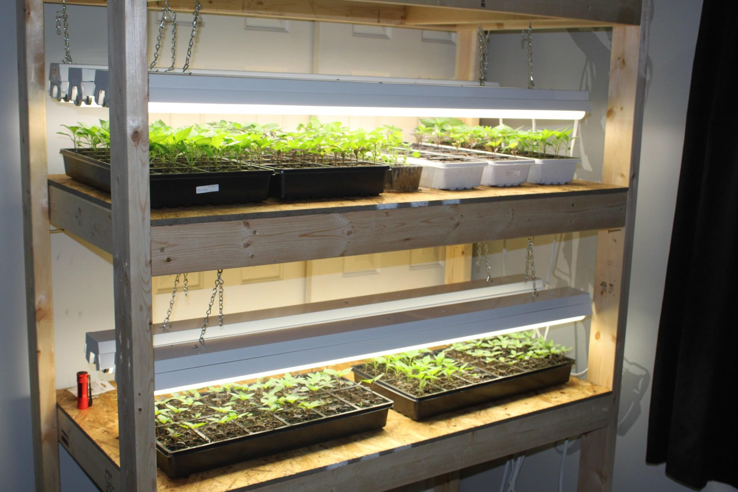 Build Indoor Seed Starting Rack Cheap Old