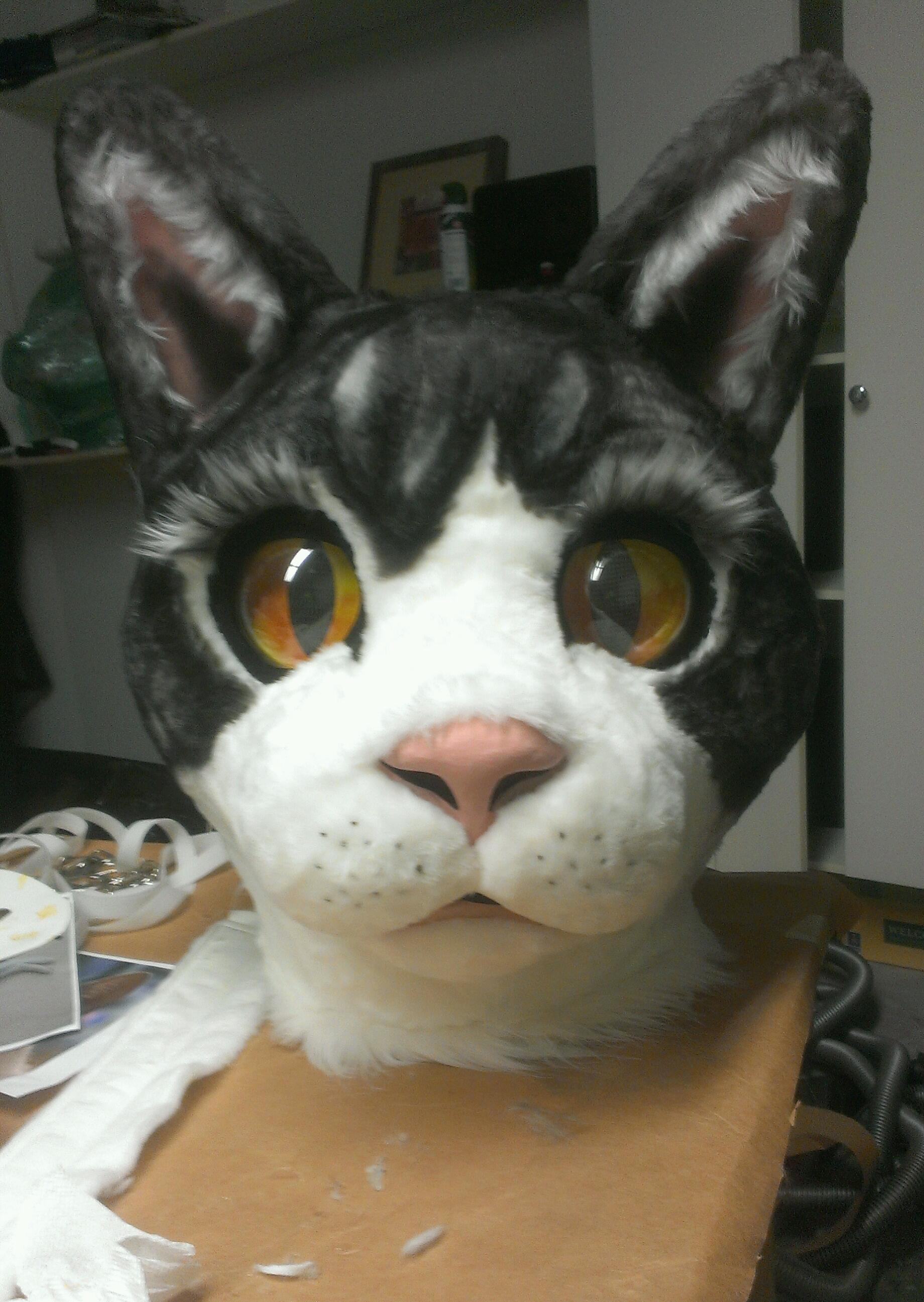 Build Paper Mache Cat Head Grand Illusions