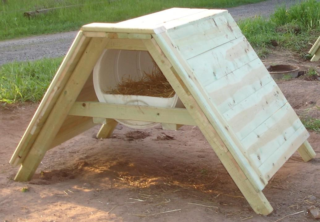 Build Sled Dog House Plans Materials Design Video