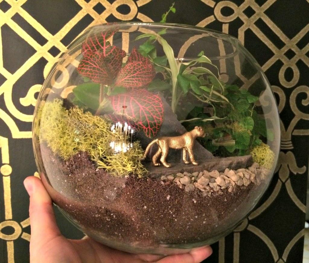 Build Your Own Mini Garden Terrarium Giveaway