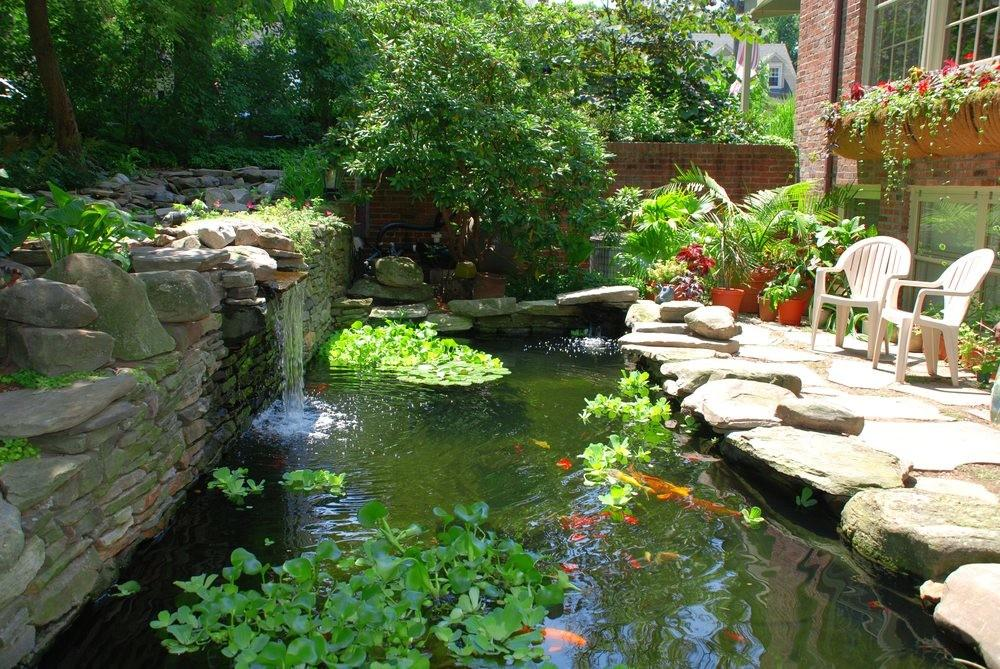 Building Koi Pond Garden Take Care