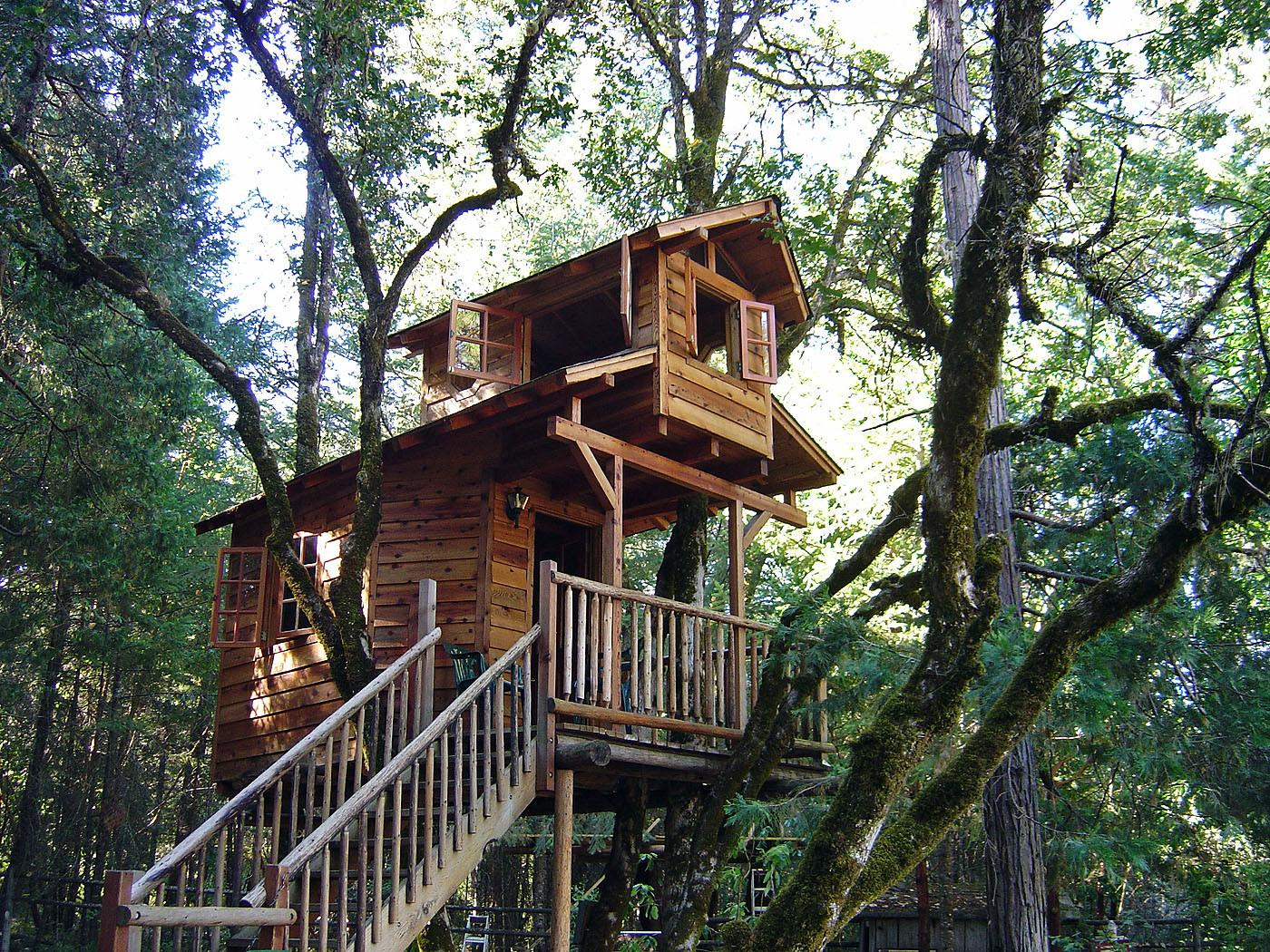 Building Your Own Tree House Build