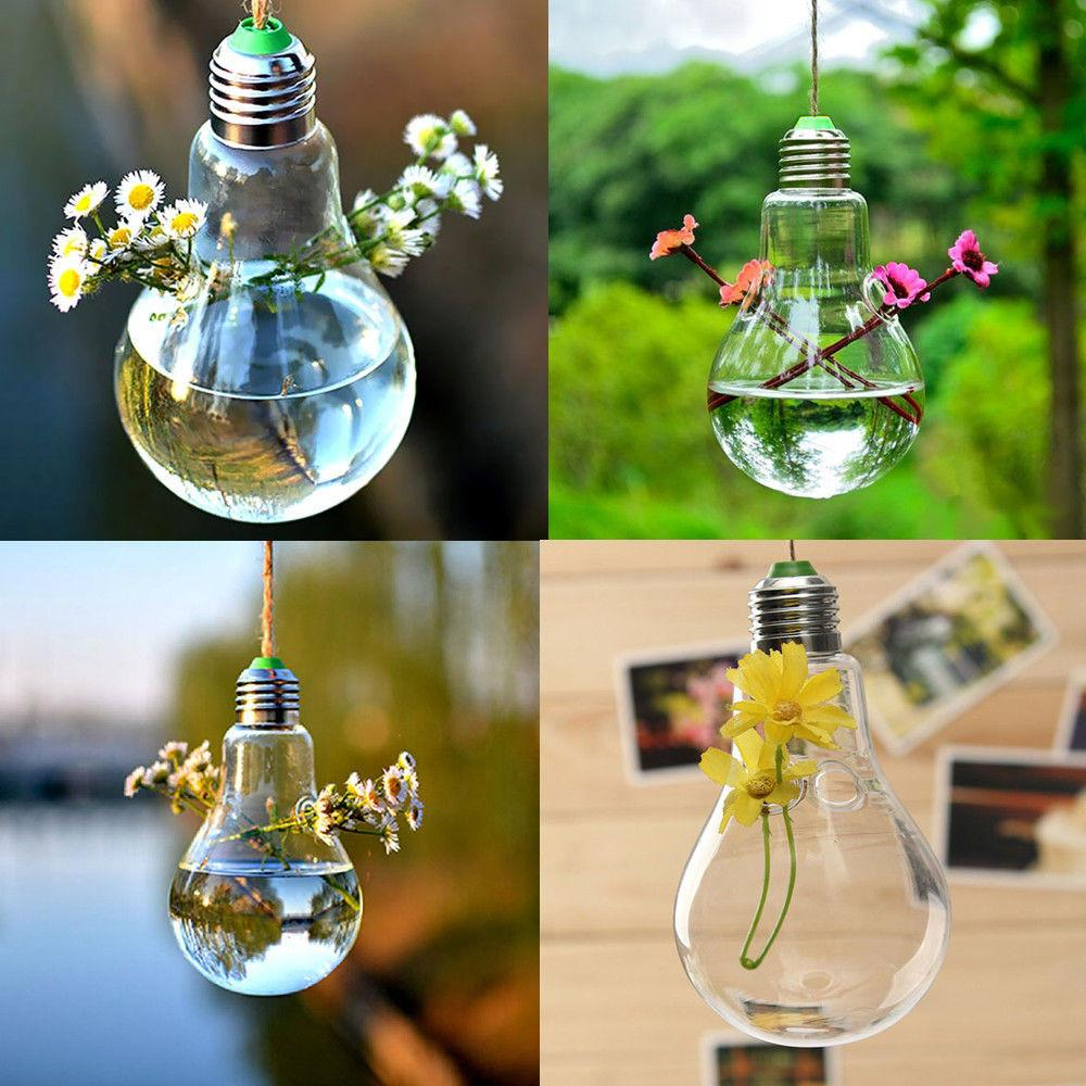 Bulb Shape Hanging Flower Hydroponic Plants Glass Vase