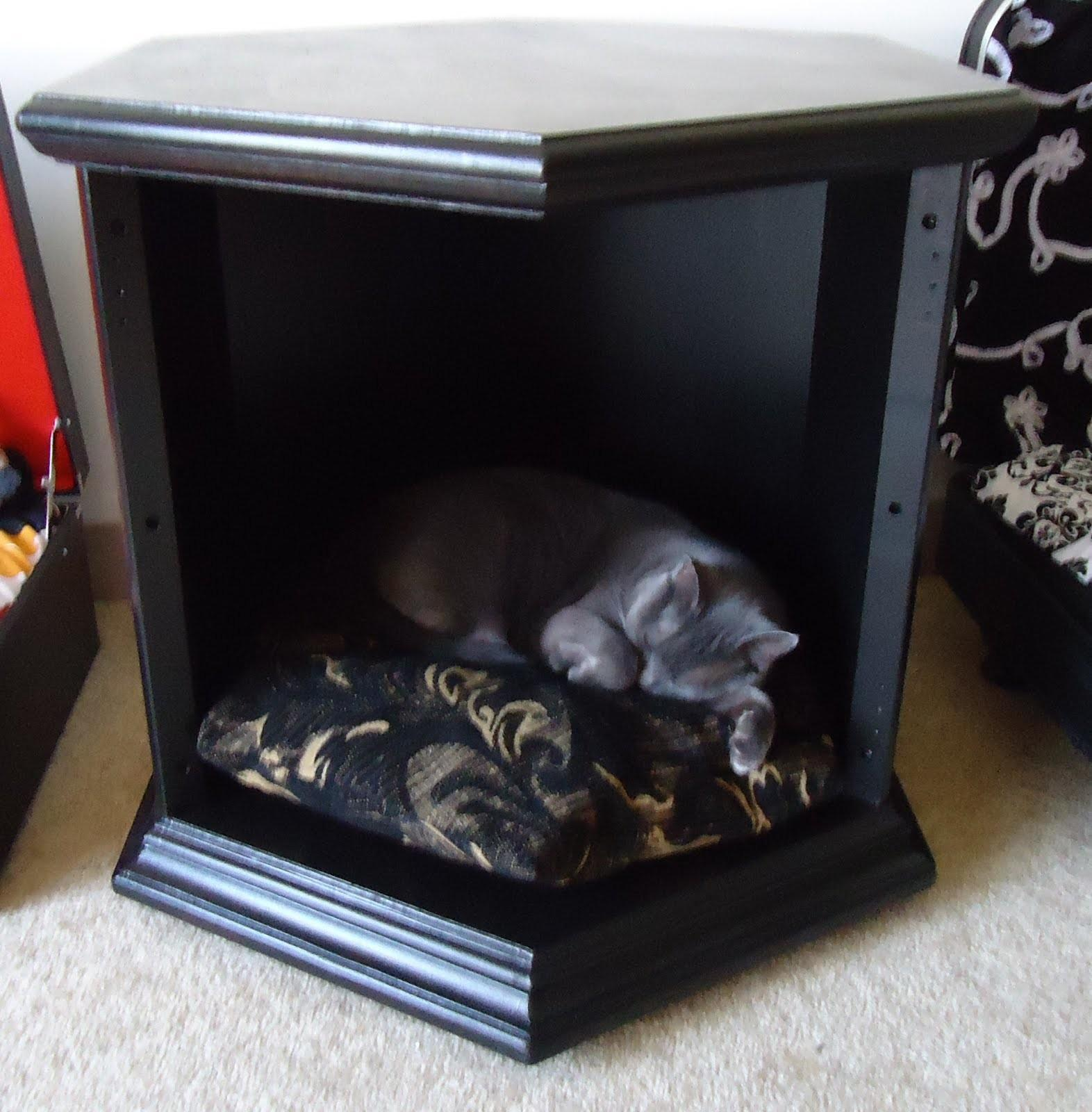 Can Dual Function End Table Pet Bed