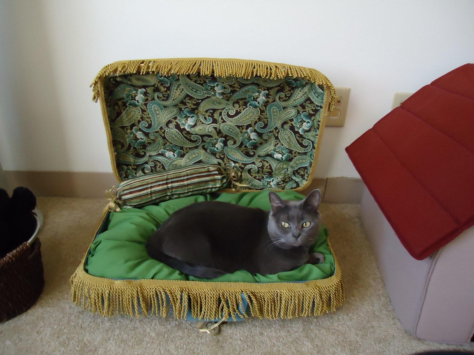Can Vintage Suitcase Upcycled Into Pet Bed