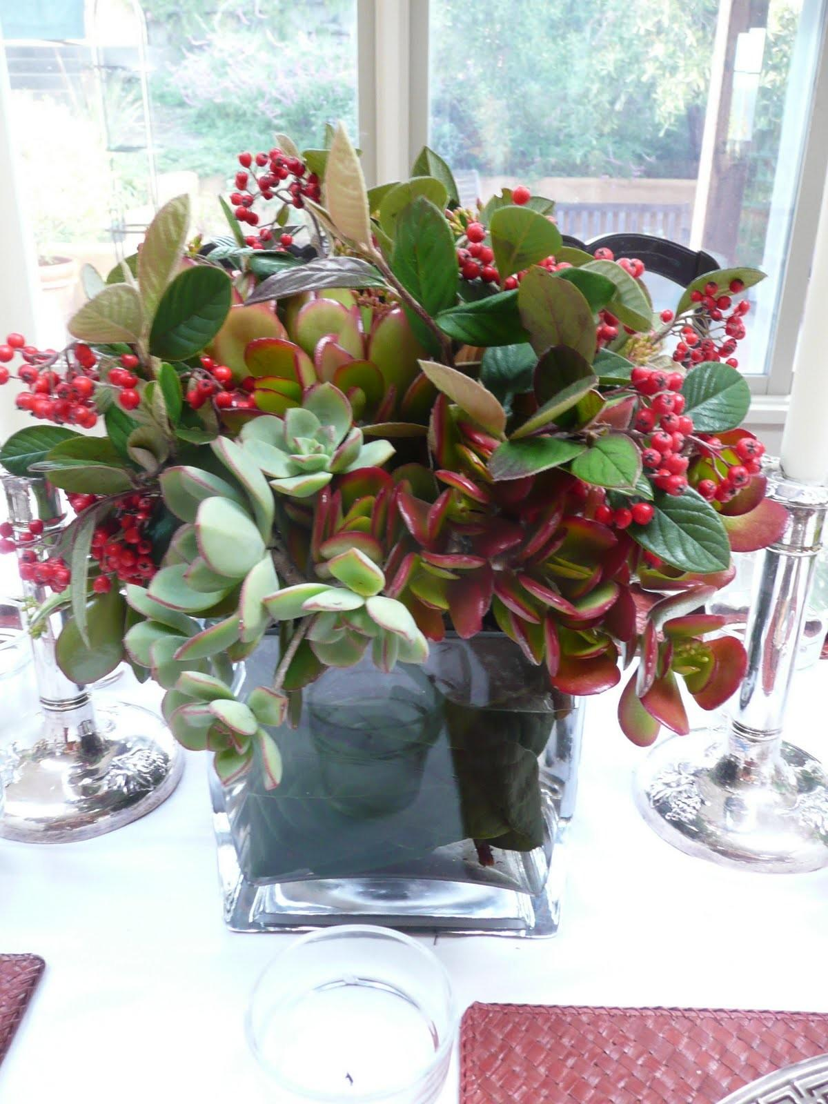 Cecilie Starin Style Succulents Holidays