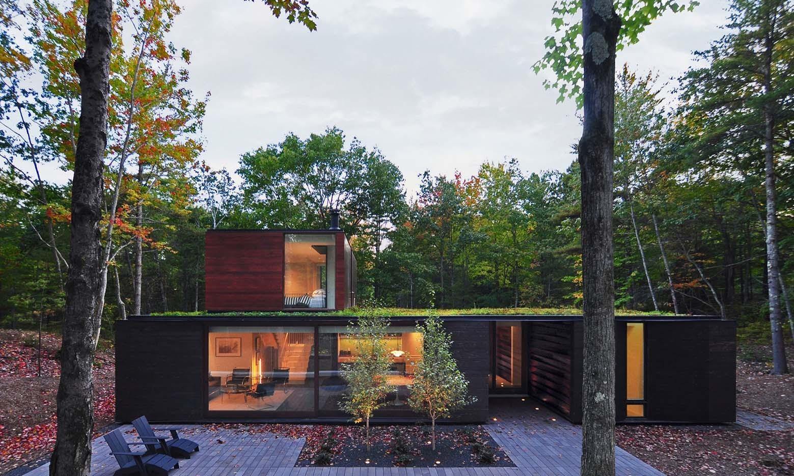 Charred Cedar Helps Modern House Blend Into Forest Curbed