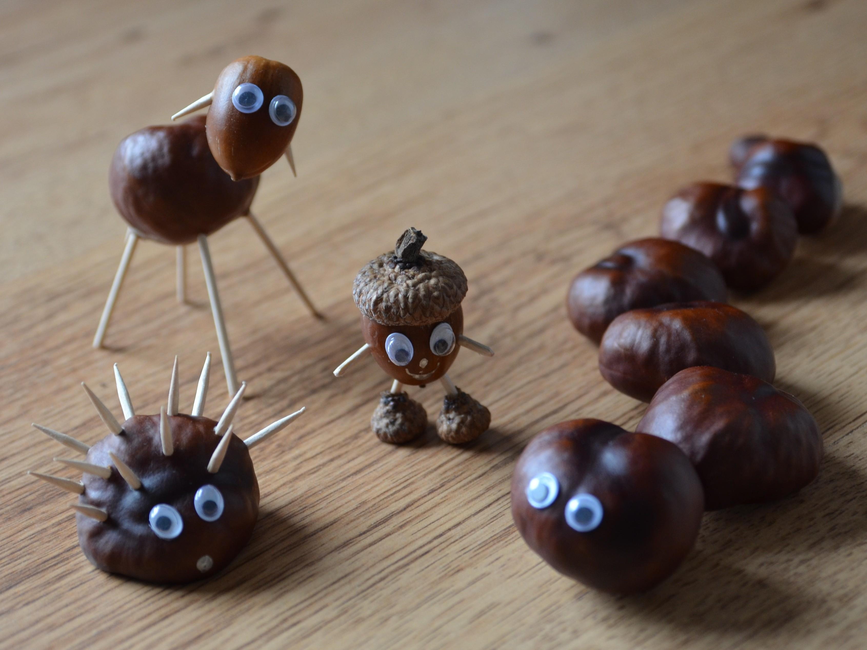 Chestnut Zoo Fall Craft Kids