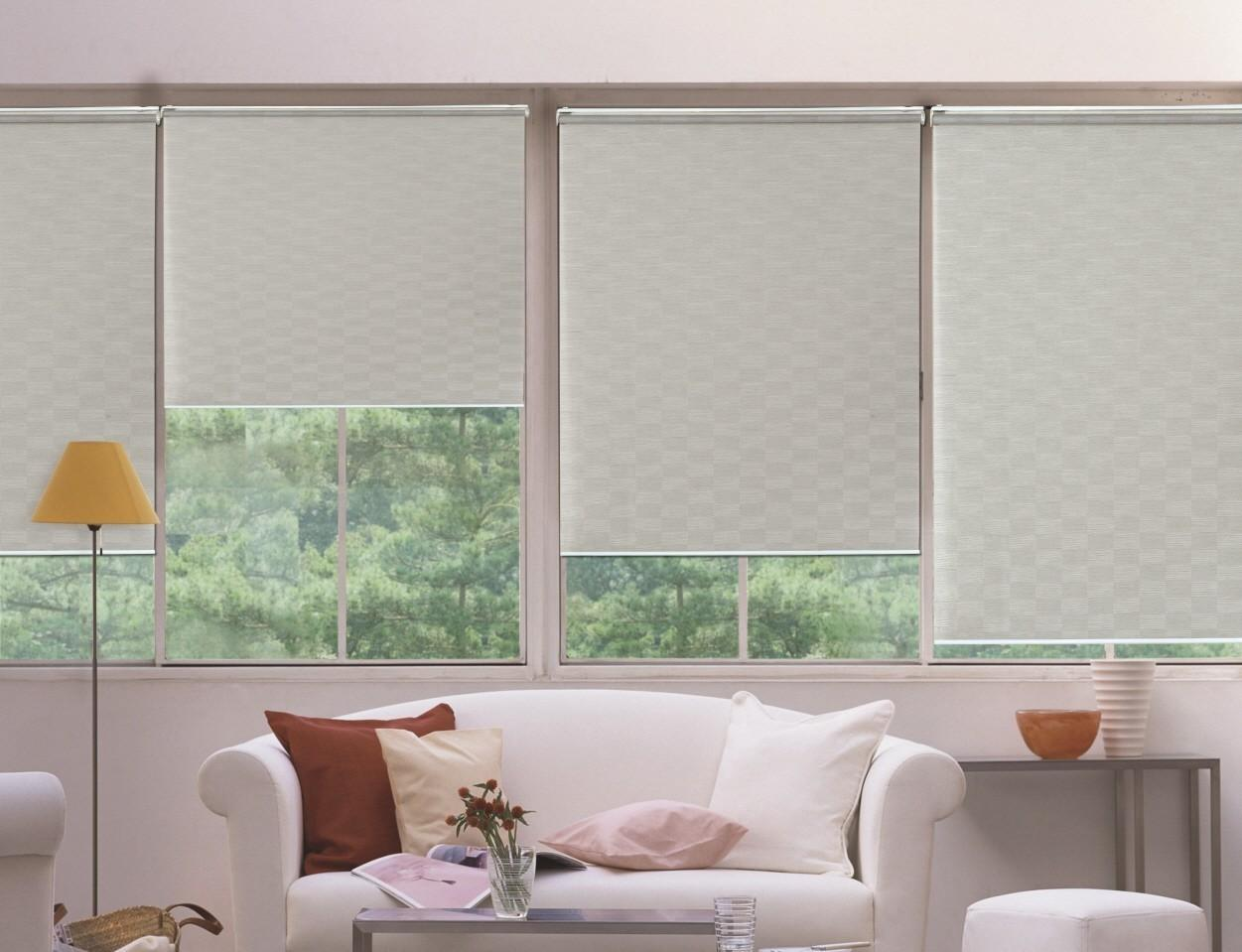 Choose Trendy Windows Shades Designs Your Home