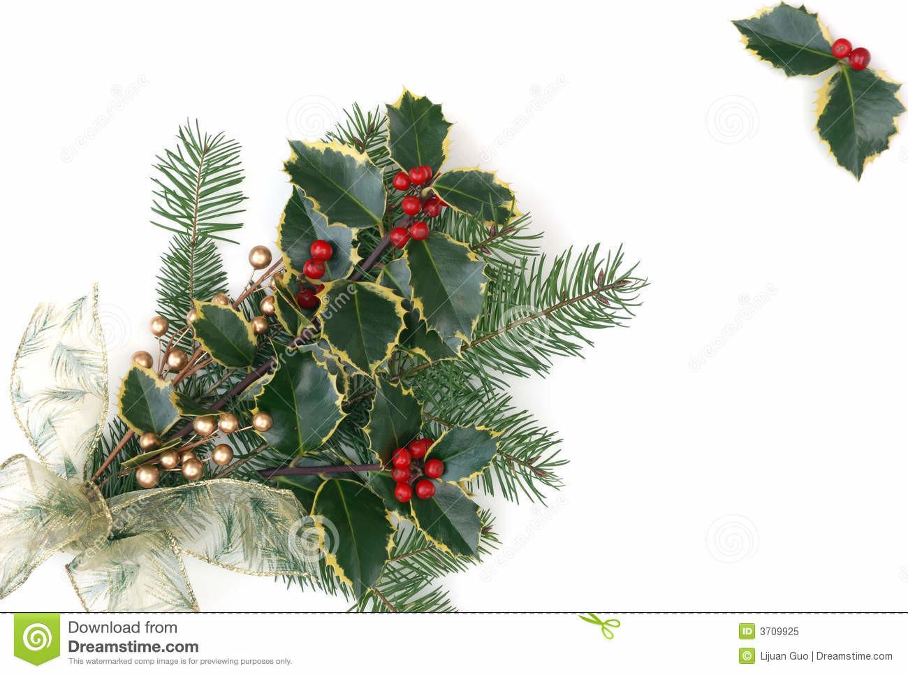 Christmas Decorations Holly Berries Royalty