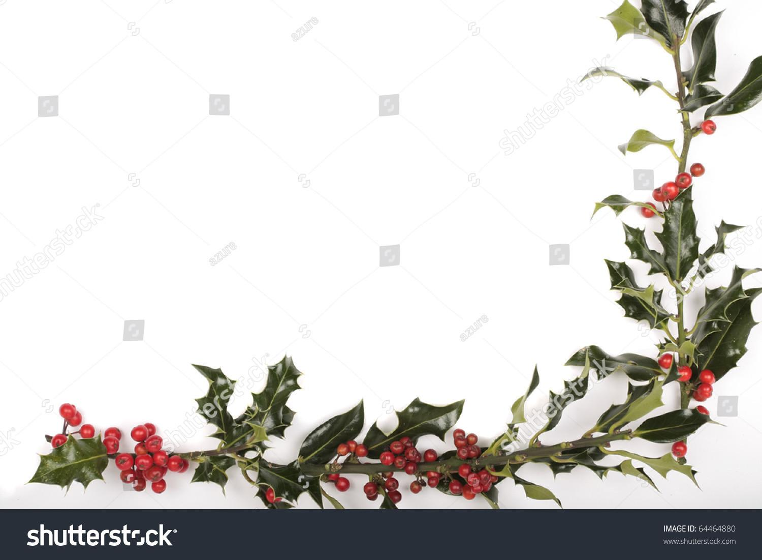 Christmas Holly Berries Decorations Stock