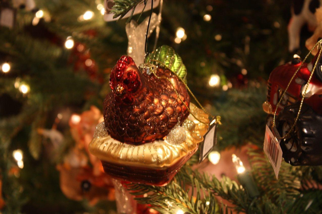 Christmas Tree Decorating Ideas All Kinds Tastes