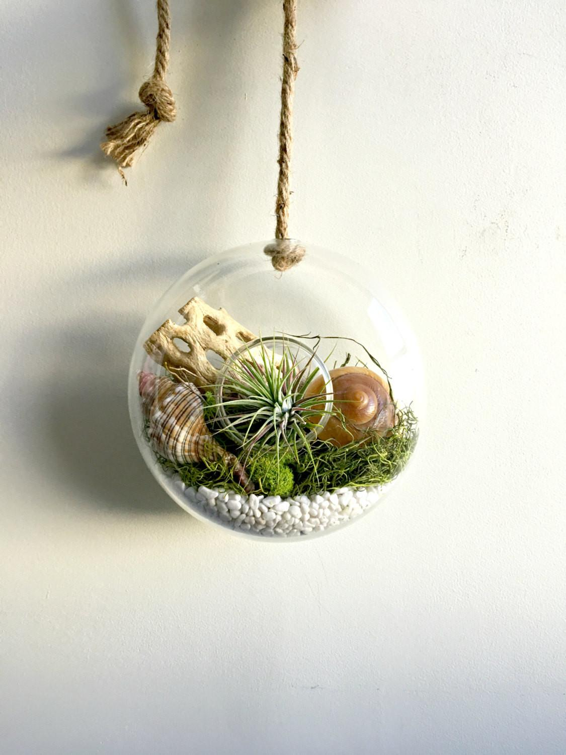 Circle Glass Vase Wall Hanging Terrarium Air Plant
