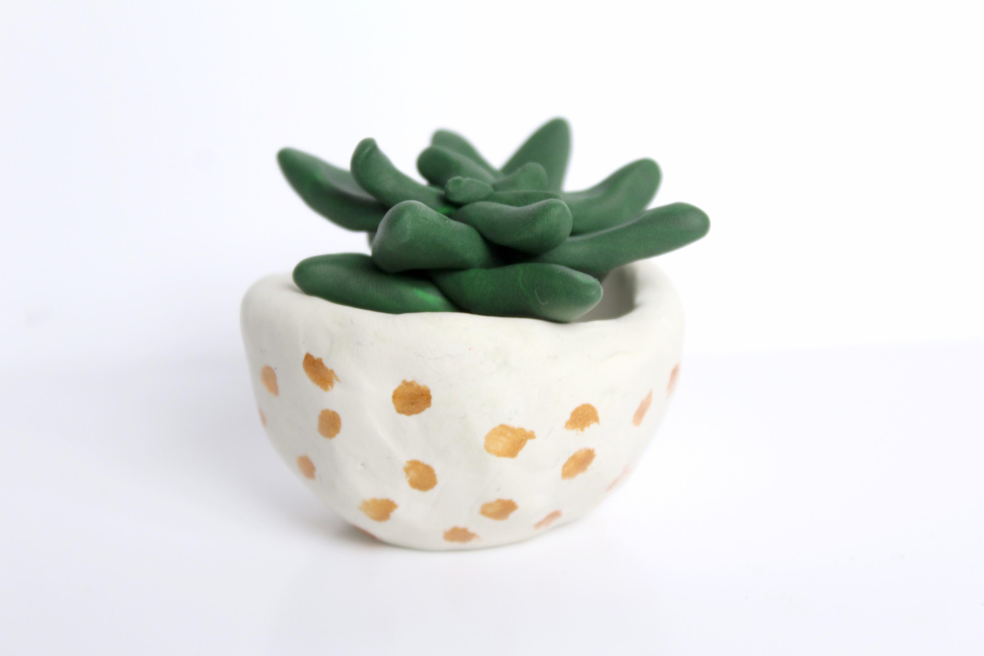 Clay Succulents Cacti Make Collective