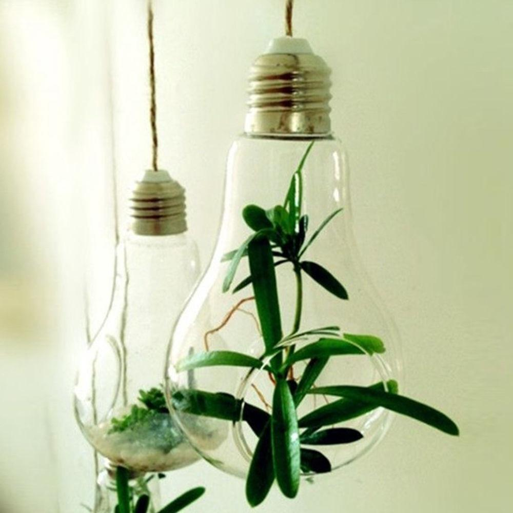 Clear Light Bulb Glass Hanging Hydroponic Flower Plant