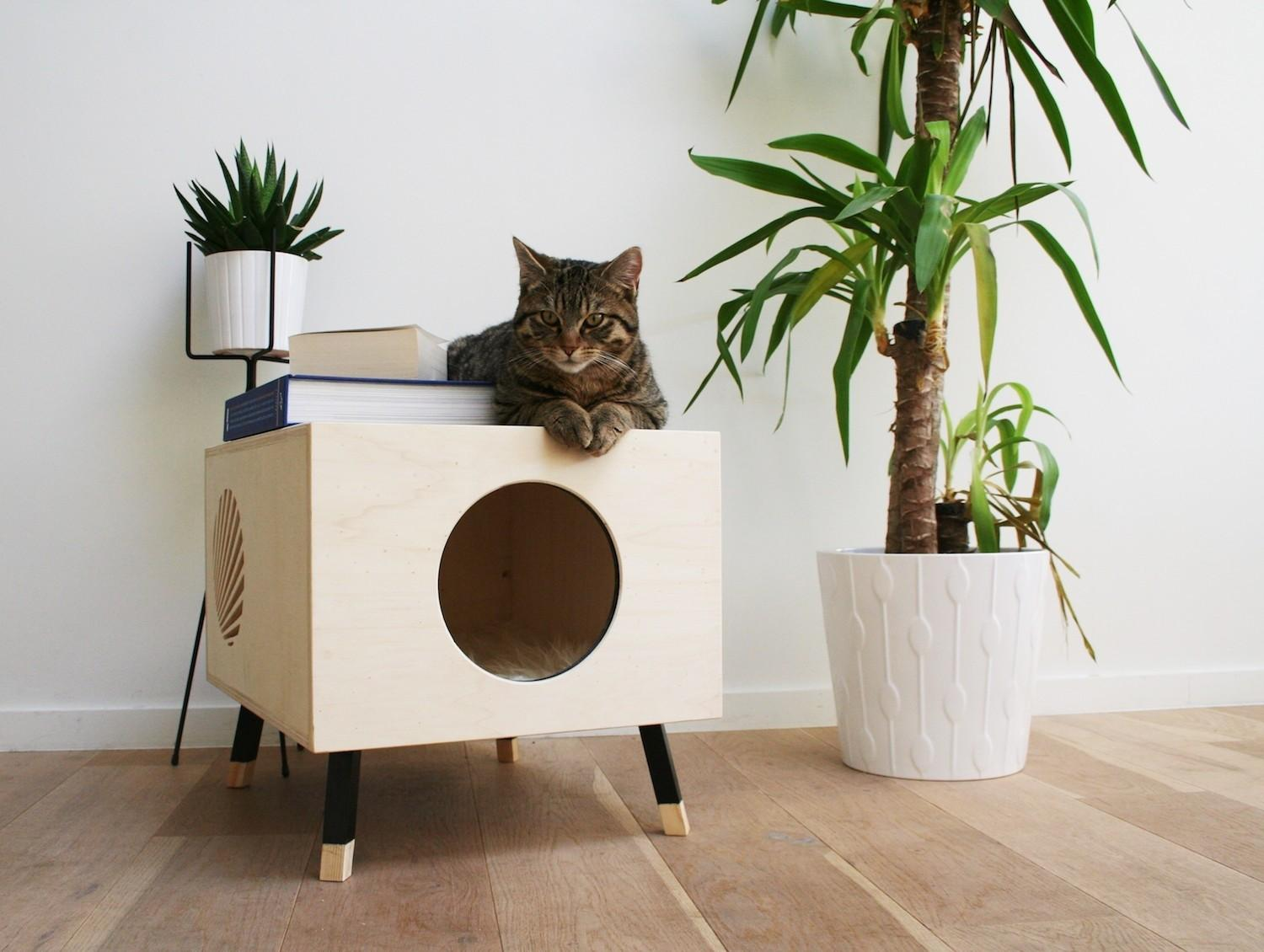 Coffee Table Designed Your Cat