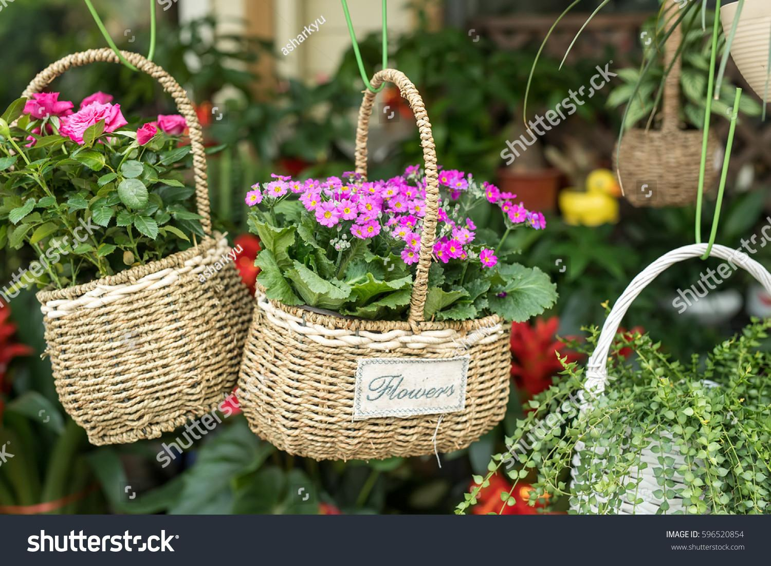 Colorful Flowers Basket Hanging Garden Centre Stock