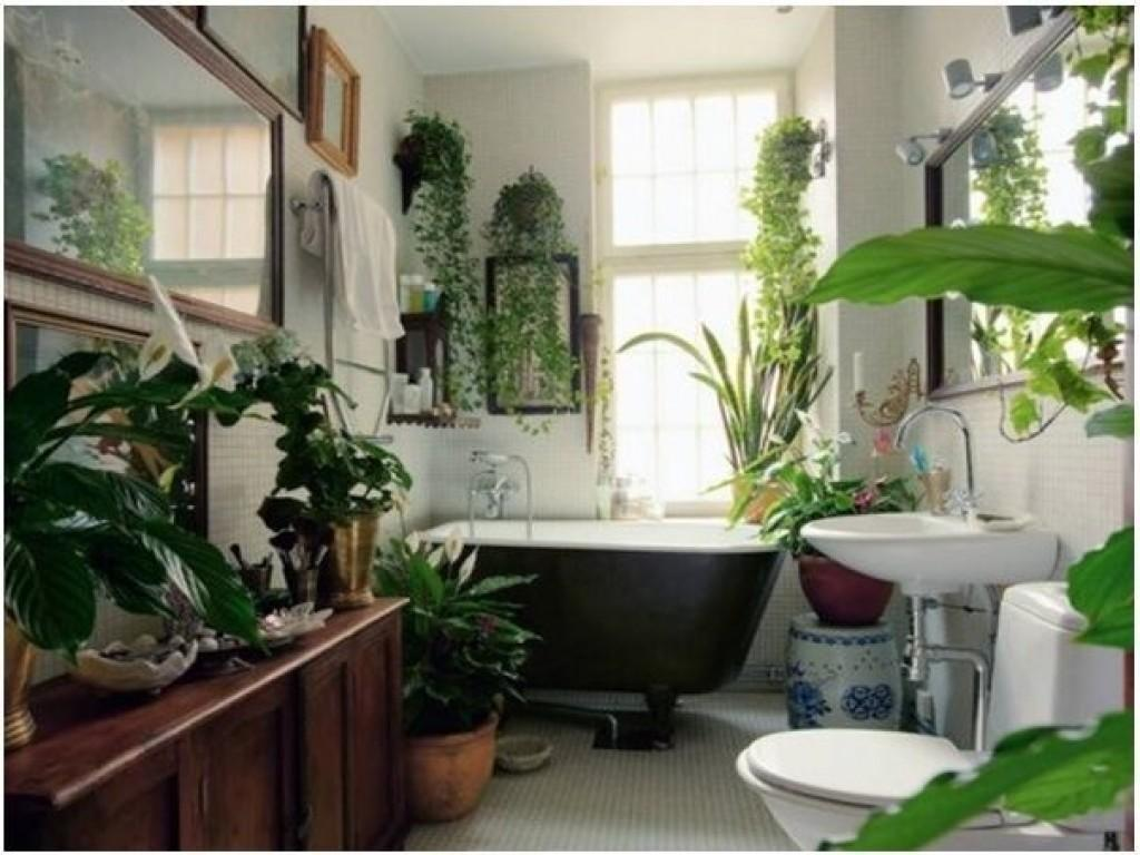 Colorful Kitchens Decorating Plants Bathroom
