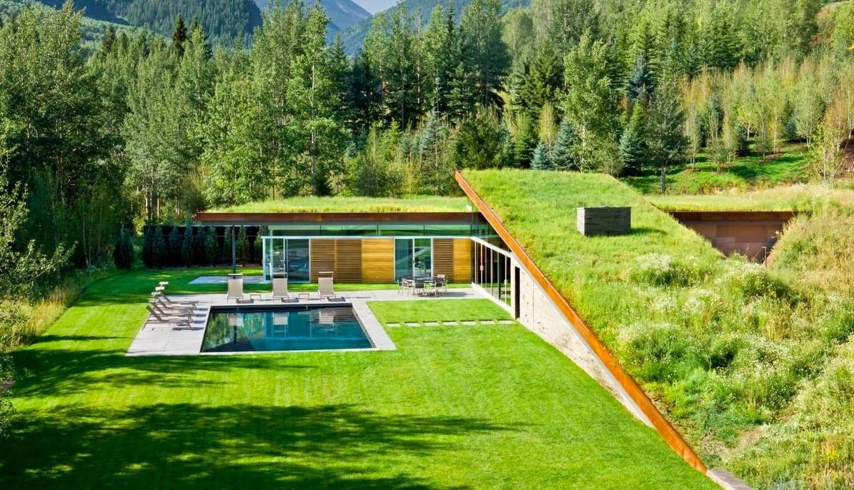 Contemporary House Green Roof