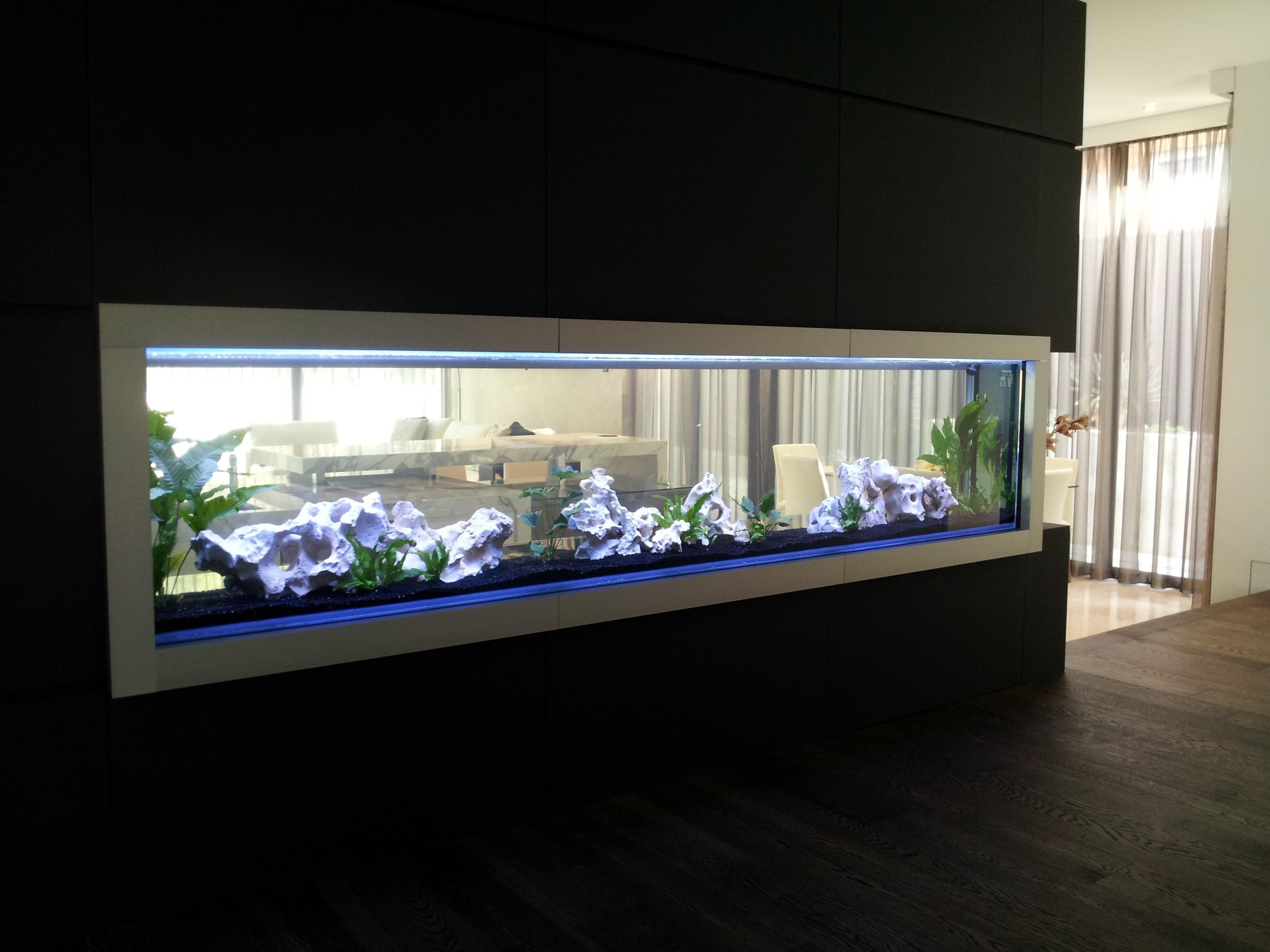 Cool Design Corner Shape Fish Tank Imagas Modern