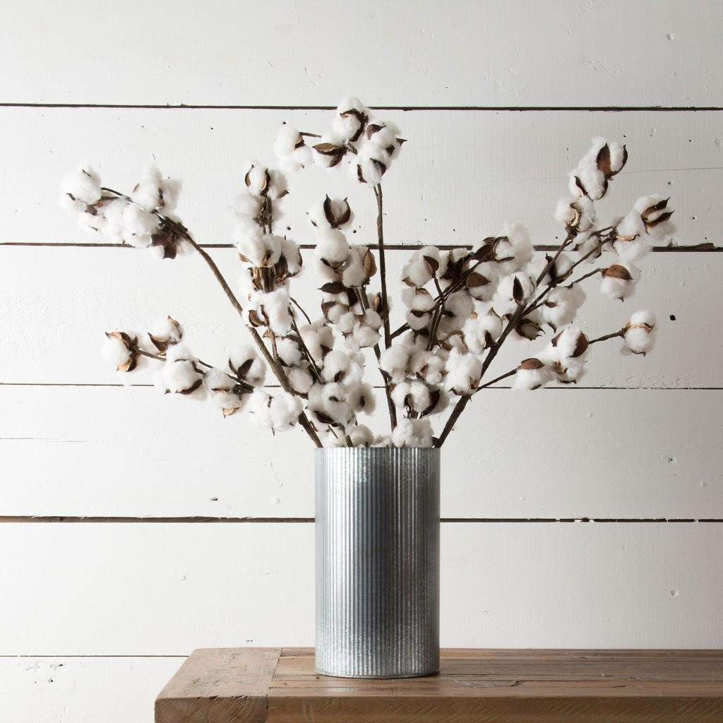 Cotton Stem Magnolia Chip Joanna Gaines