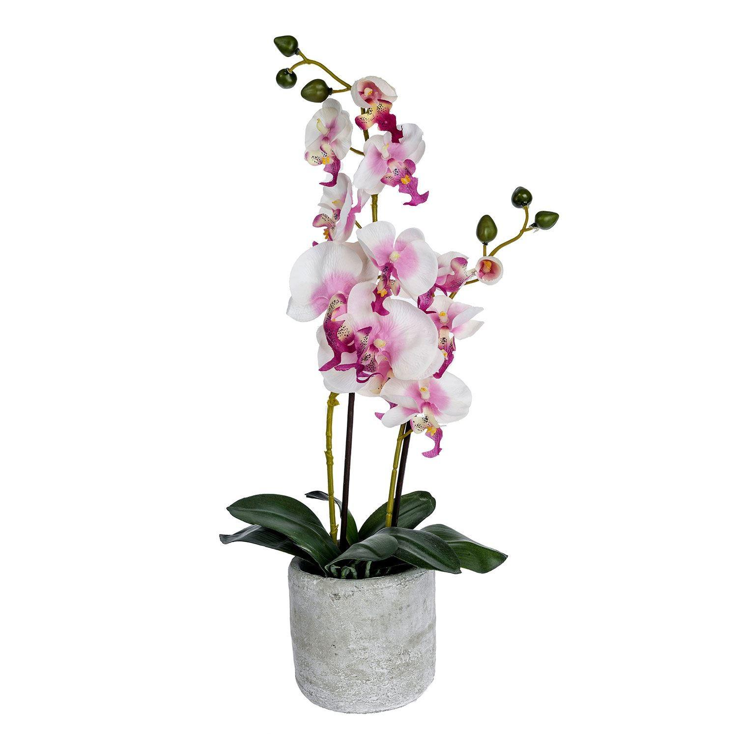Cream Pink Artificial Orchid Grey Stone Pot