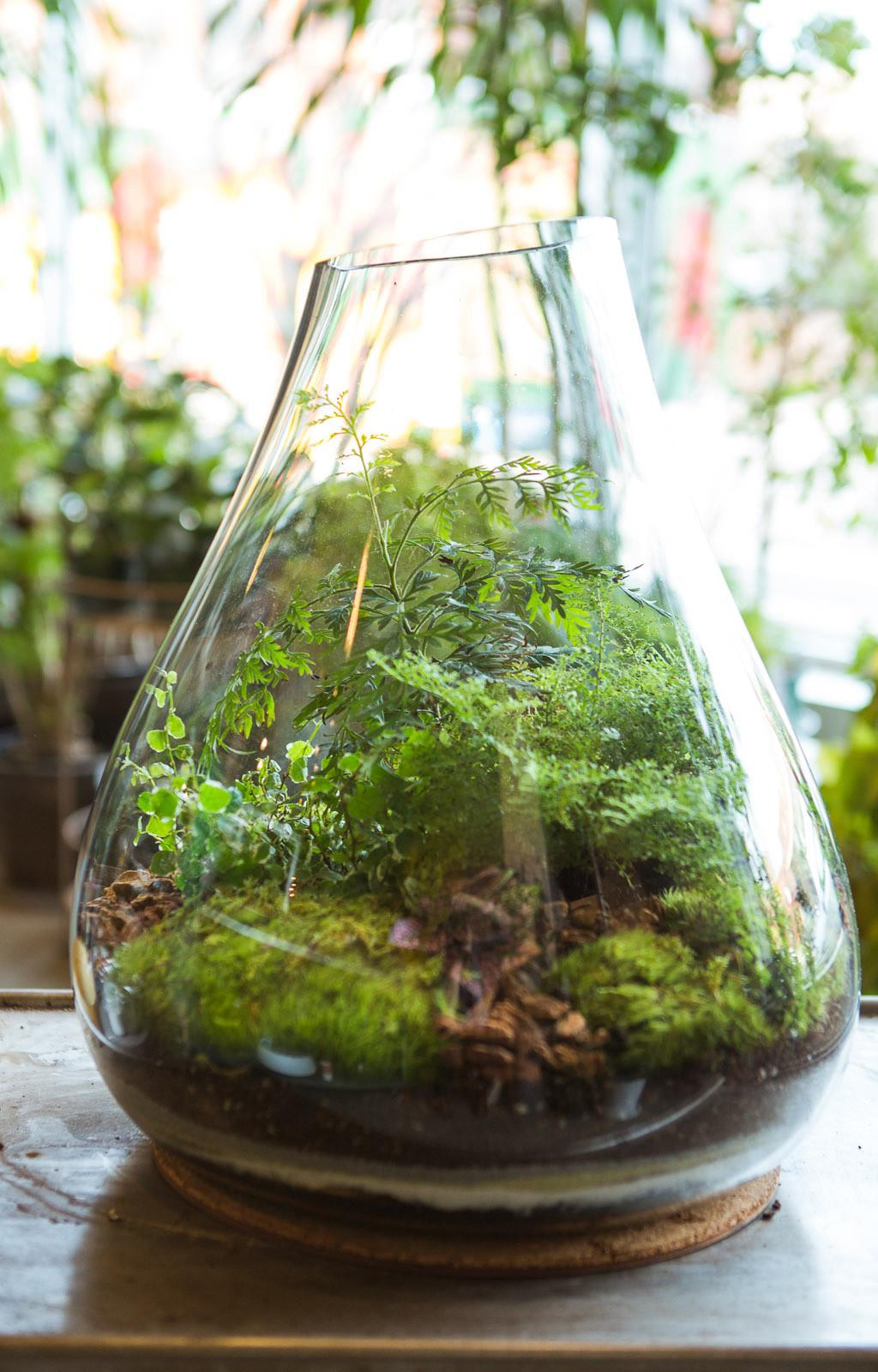 Create Dynamic Table Centerpieces Terrariums