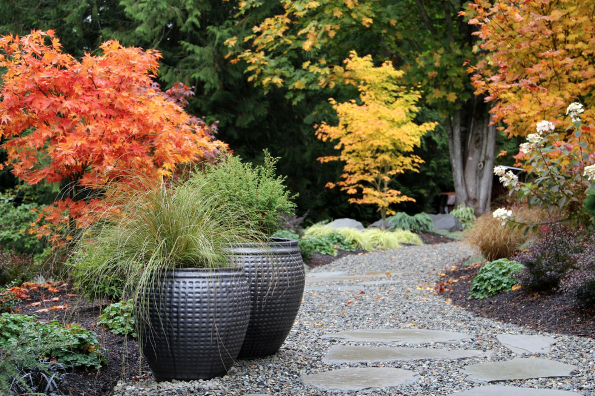 Creating Stunning Fall Garden Your Client