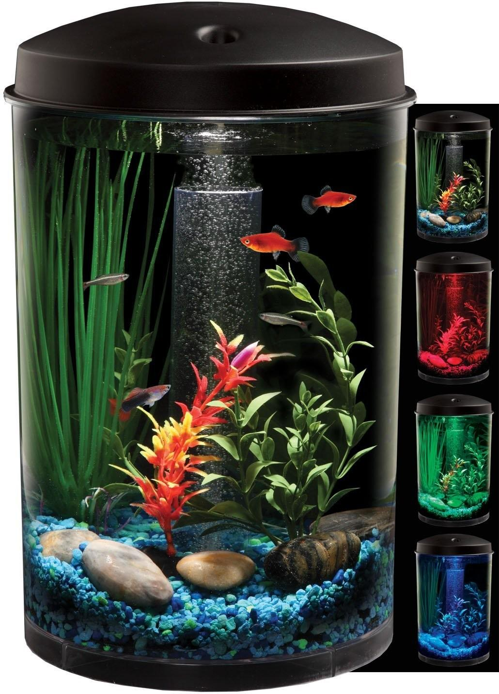 Creative Aquariums Modern Fish Tanks Designs Part