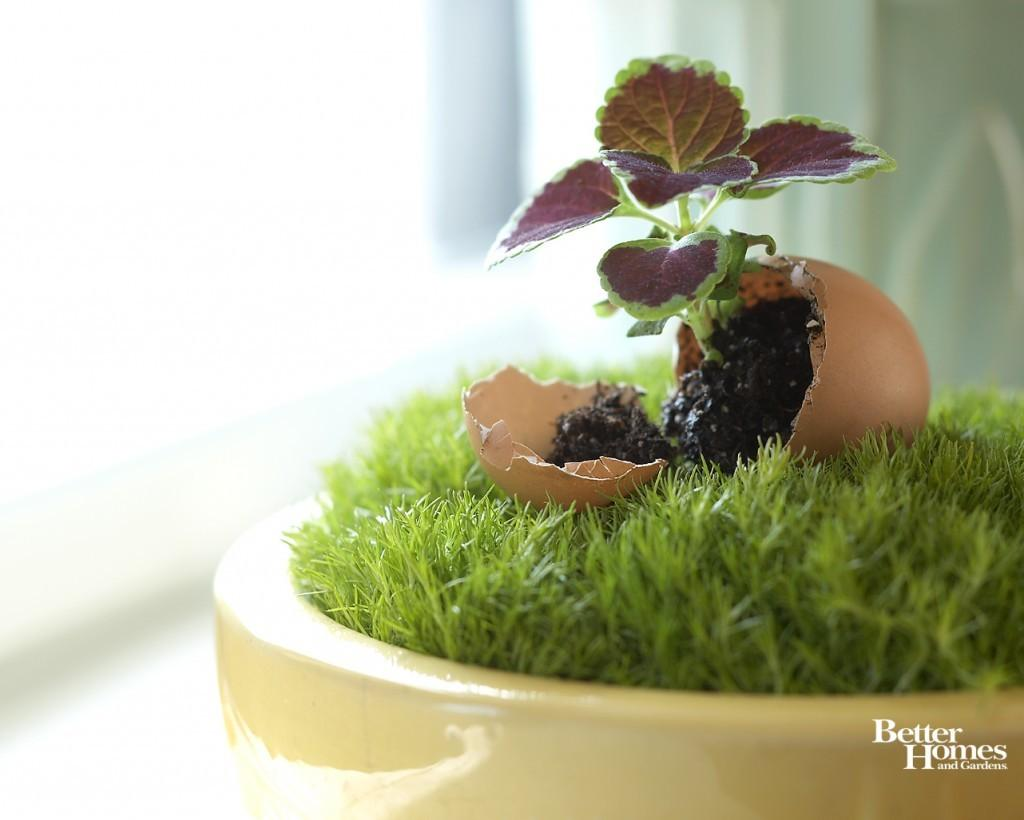Creative Easter Decorating Ideas
