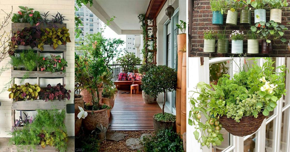 Creative Ideas Balcony Garden Containers