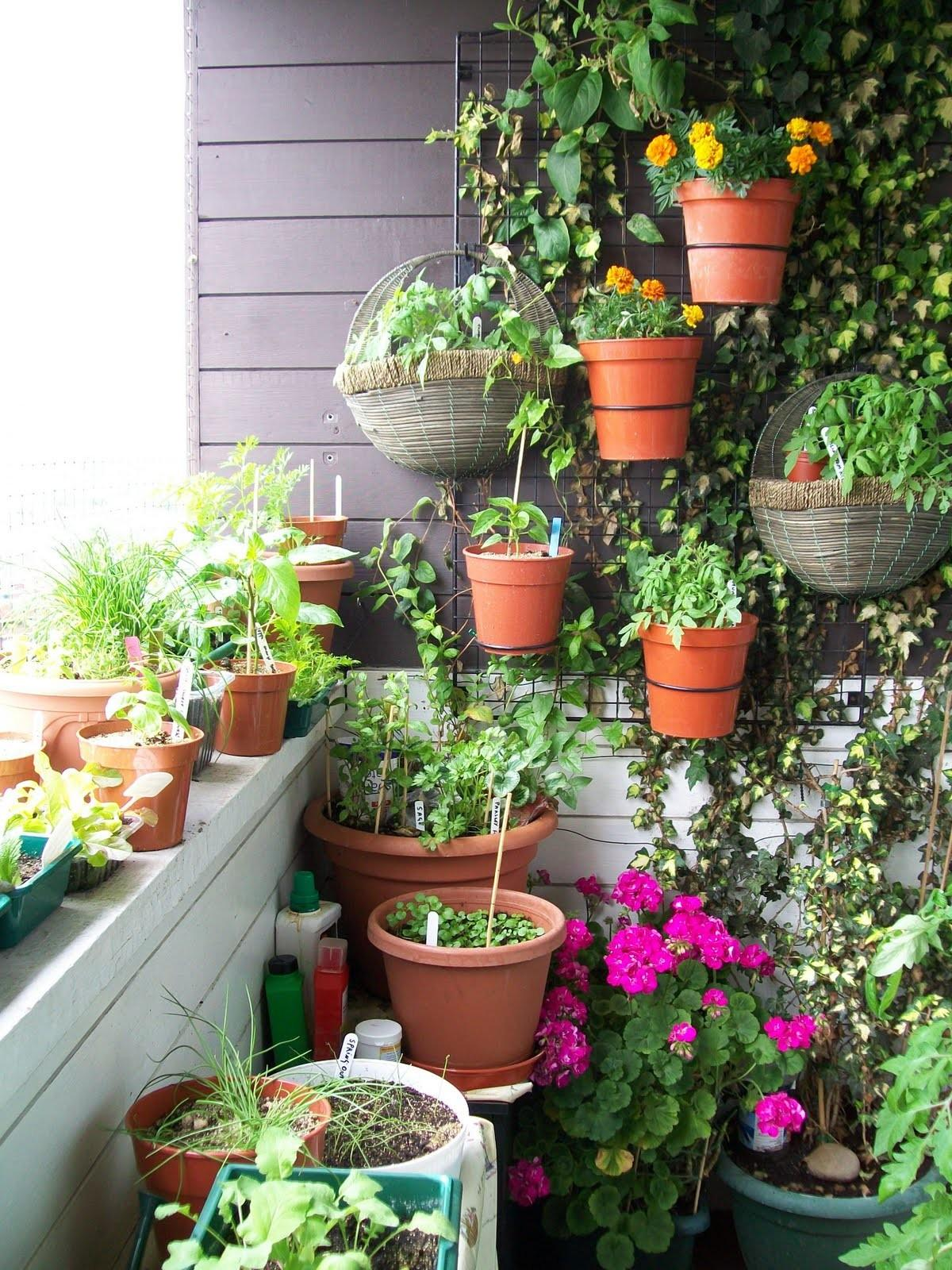 Creative Ideas Small Balcony Garden Applying