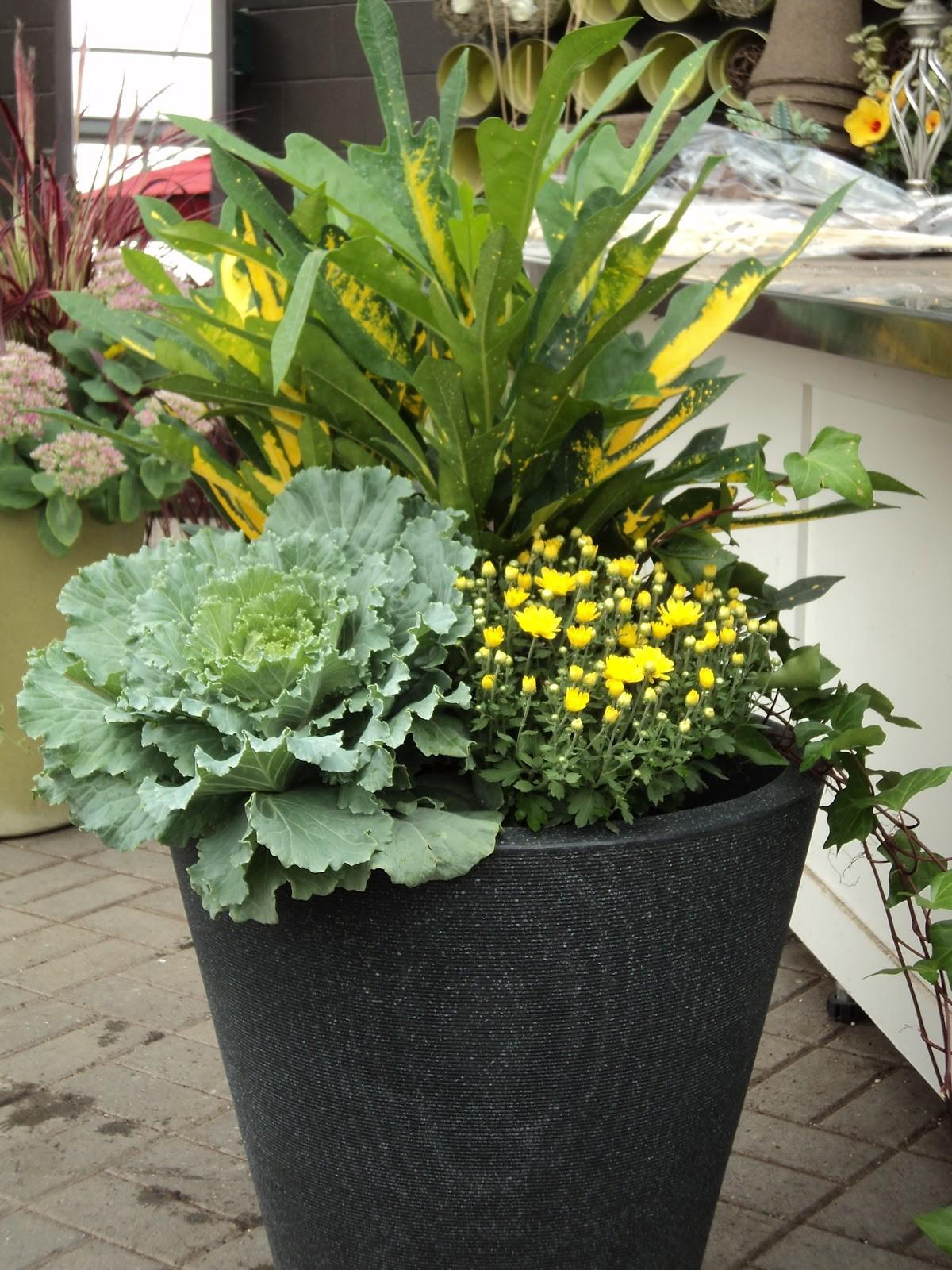 Creative Interiors Blog Fall Planters