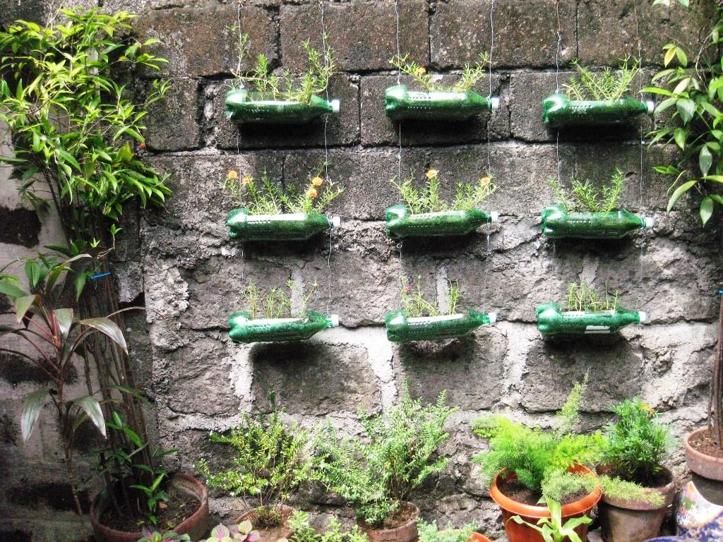 Creative Planters Box Using Recycled Bottle Plastic