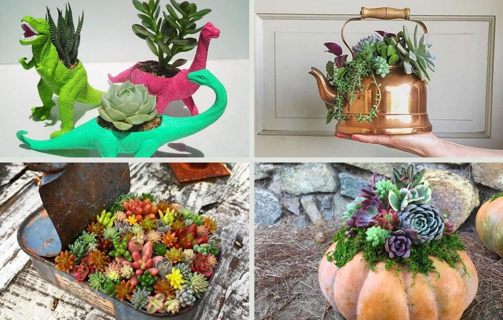 Creative Succulent Planter Ideas Should Definitely