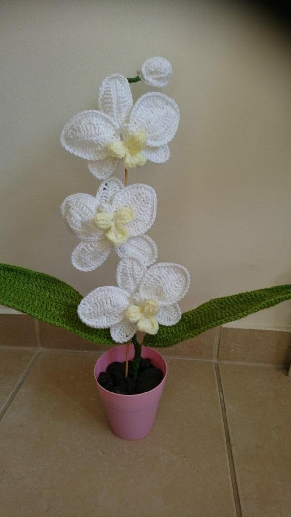 Crochet Orchid Numonday