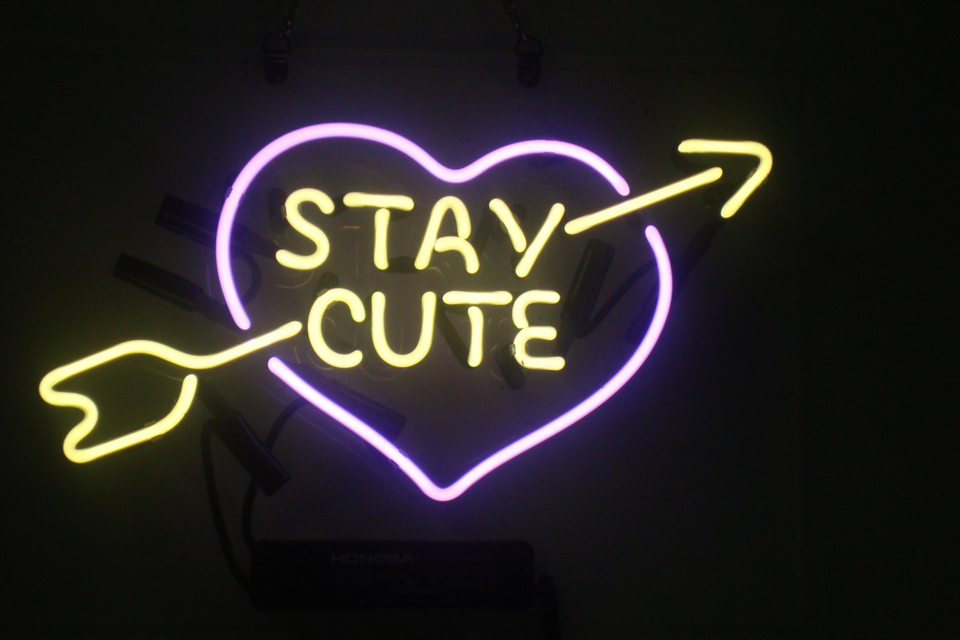 Cute Neon Signs Callforthedream