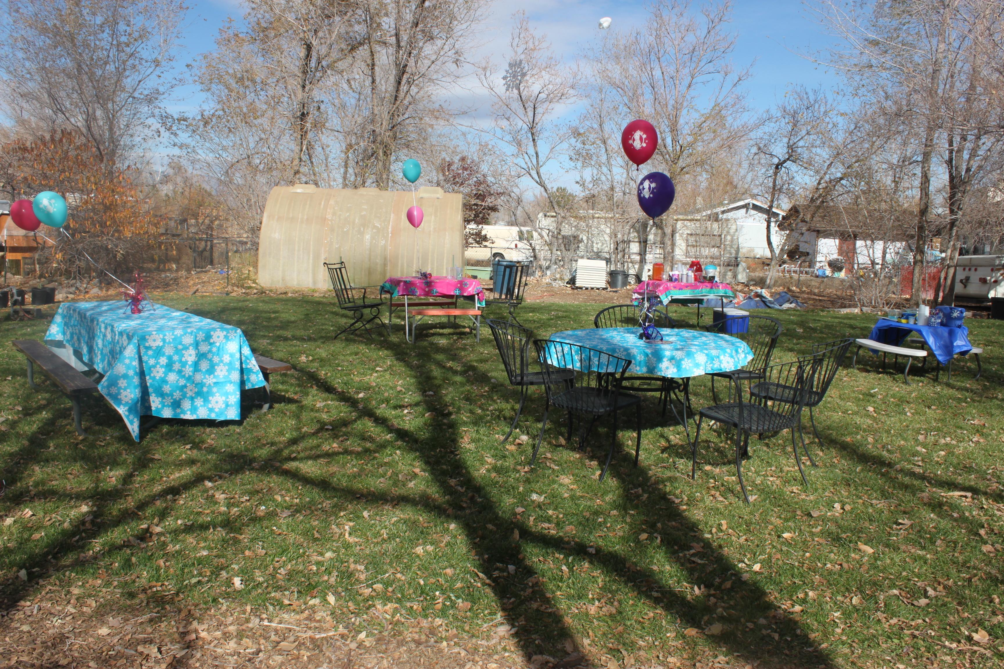 Daughters Outdoor Frozen Birthday Party November