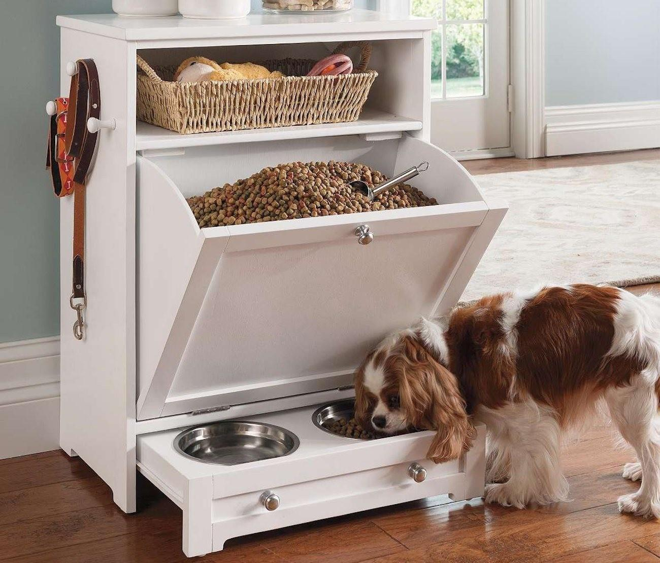 Declutter Your Dog Inspiring Ideas Organizing