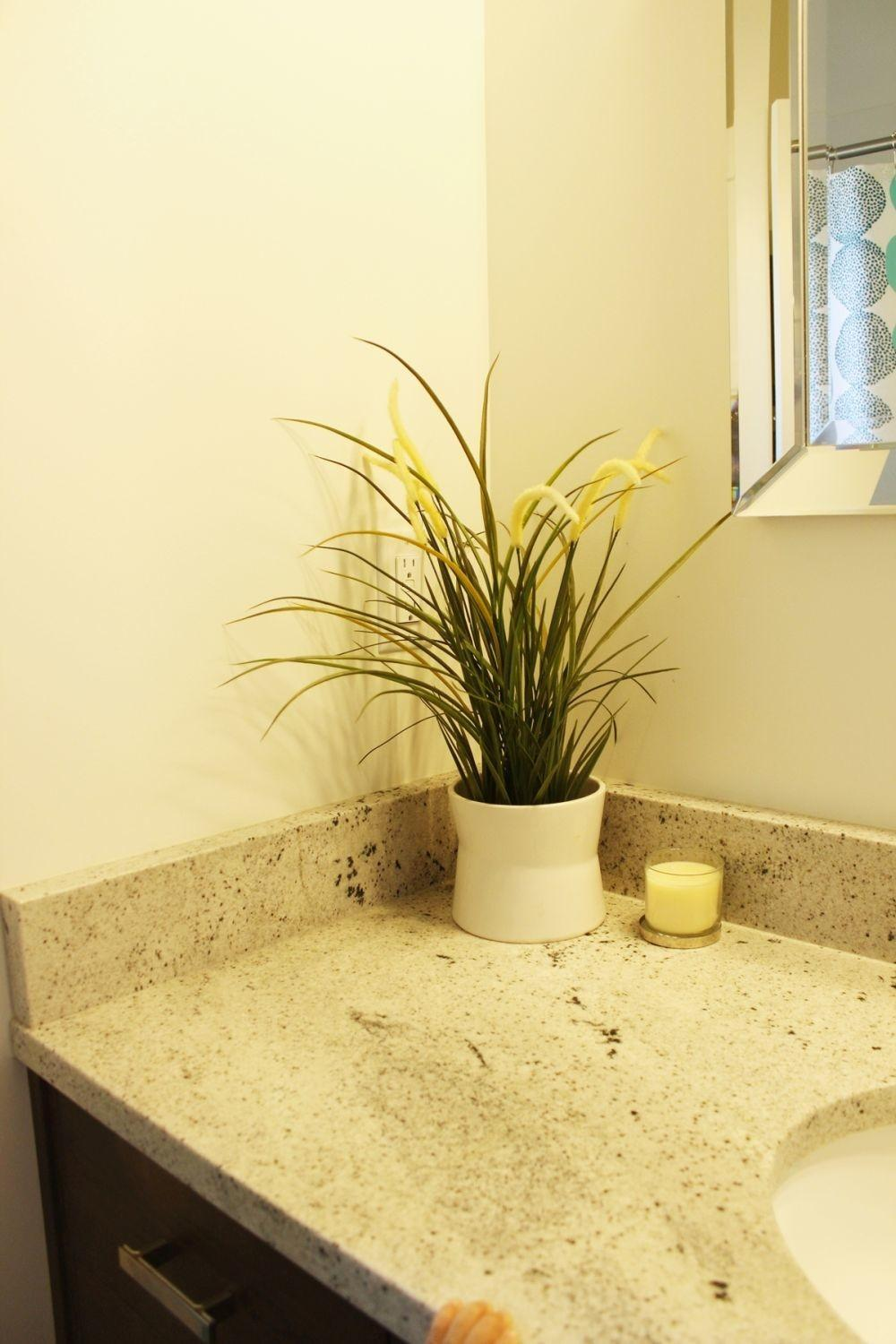 Decorate Bathroom Without Clutter