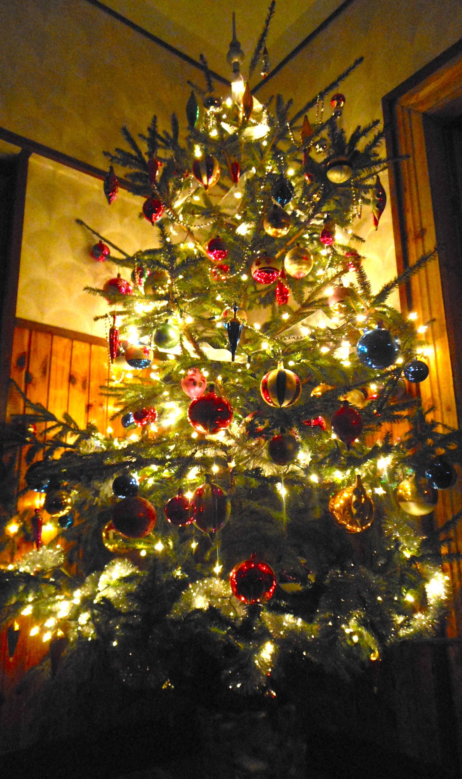 Decorate Traditional Christmas Tree Igrowhort