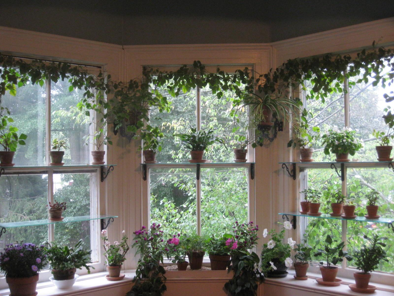 Decorations Beautiful Views Hanging Indoor Window Garden