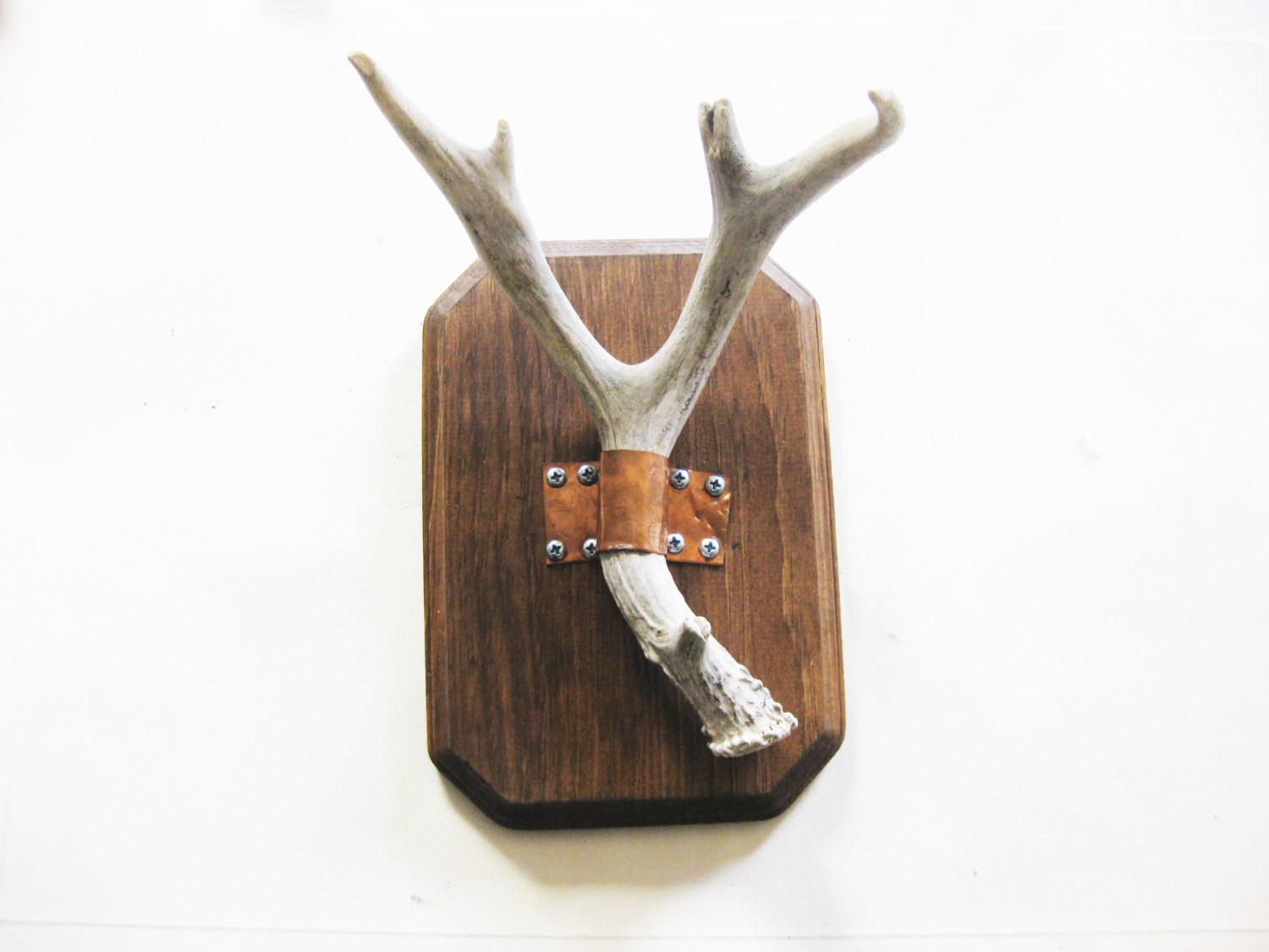 Deer Antler Wall Mounted Jewelry Holder Blackhorseshogun