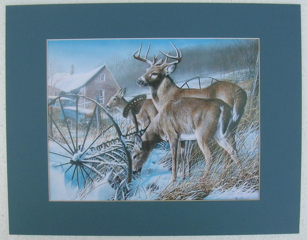 Deer Antlers Bucks Matted Country Print