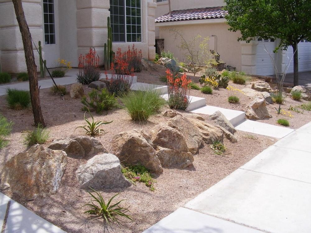 Desert Landscape Ideas Backyards Landscaping