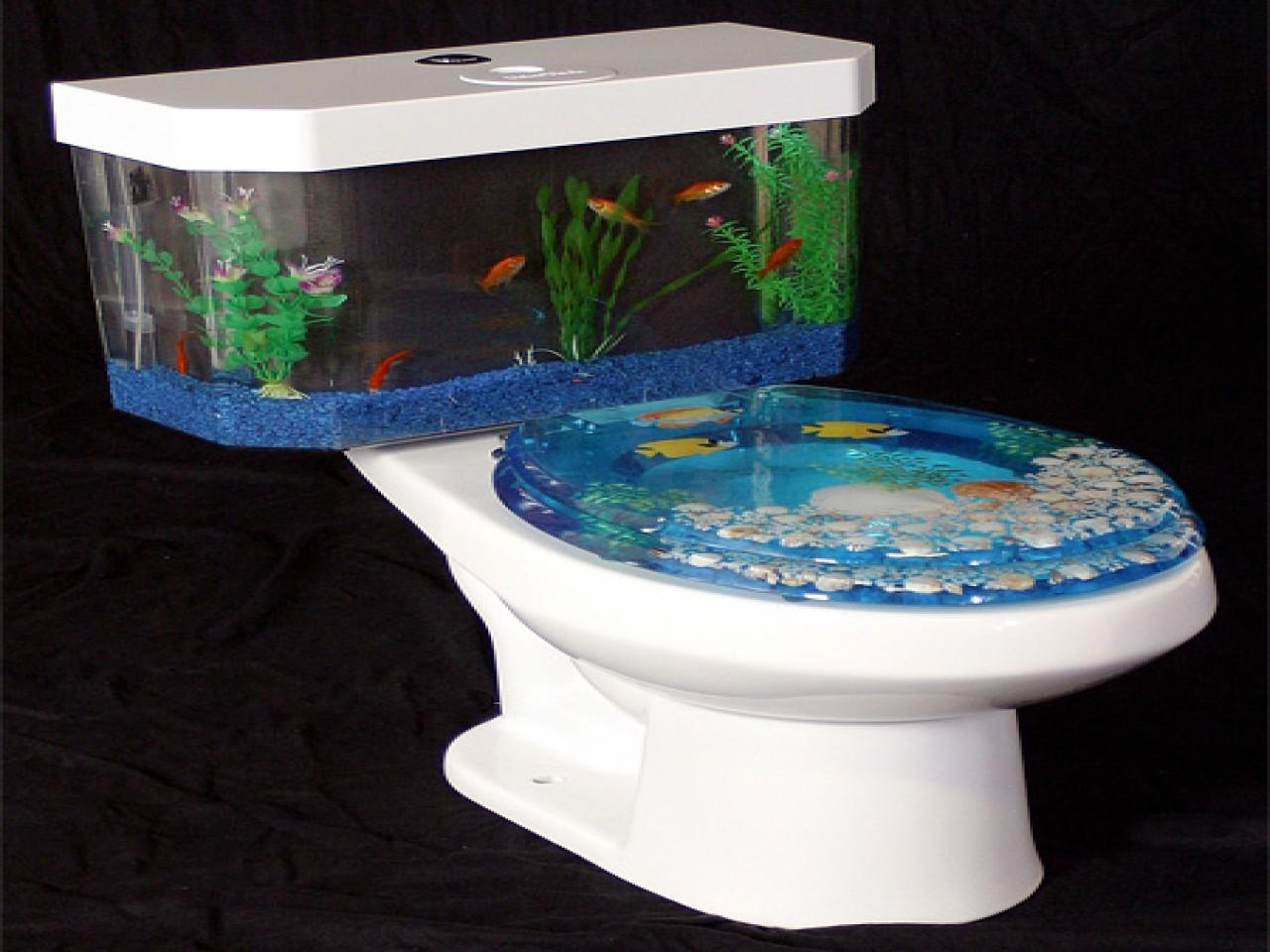 Design Your Dorm Room Modern Fish Tank Toilet