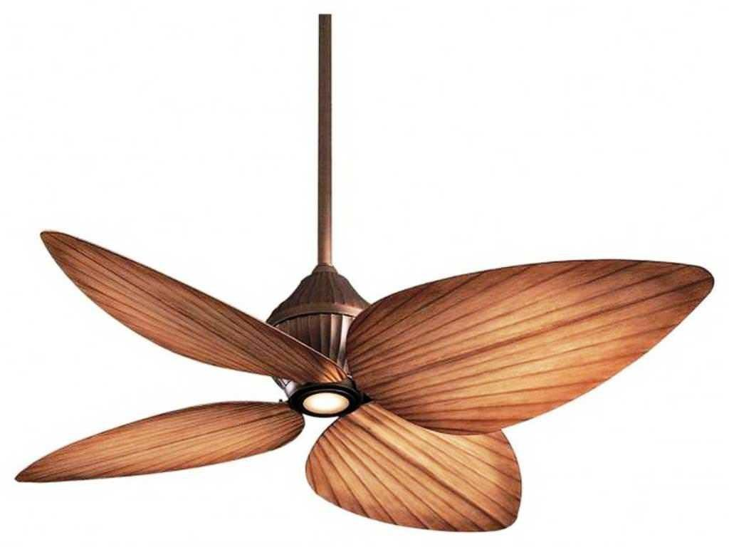 Designer Ceiling Fans Lights Contemporary